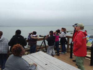 New Haven students birdwatching on Outer Island