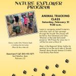 NatExp-AnimalTracking215
